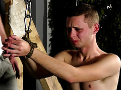 Gay bondage pictures free and...