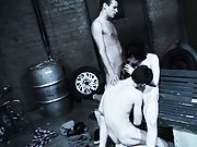 Gay dick group and male nude model newsgroups - Gay...