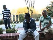 Galleries interracial gay couples and gay interracial blowjob story